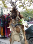 "Wildlife for sale at the daily ""Dry Bridge"" outdoor art sale and flea market in Tbilisi"