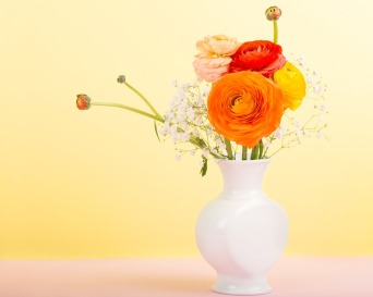 flowers-1184705_960_720