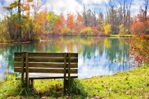 wood-bench-986347__340