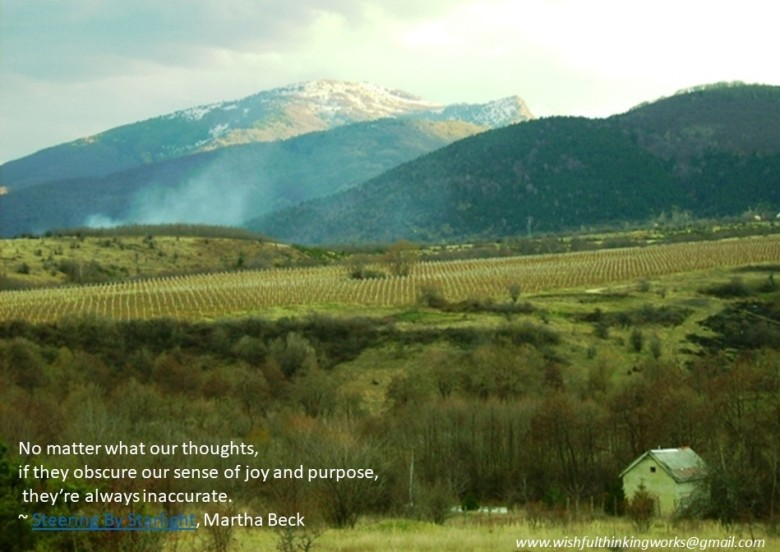 wishfulthinkingworks@gmail.com MK Photo Martha Beck Quote (4)
